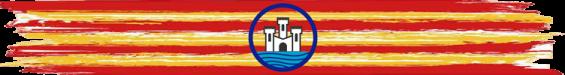 bandera y logo1